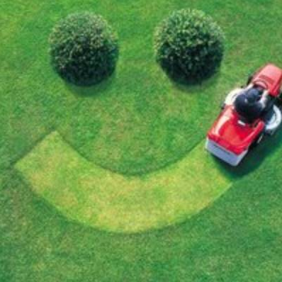 Rock Hill lawn Care Services